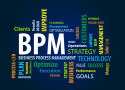 Das Business Process Management (BPM)