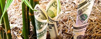 Franchising für KMU – Strategisch erfolgreich wachsen
