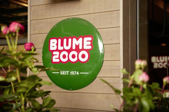 Franchisesystem Blume 2000: Neues Laden-Konzept soll bis zum Jahresende umgesetzt sein