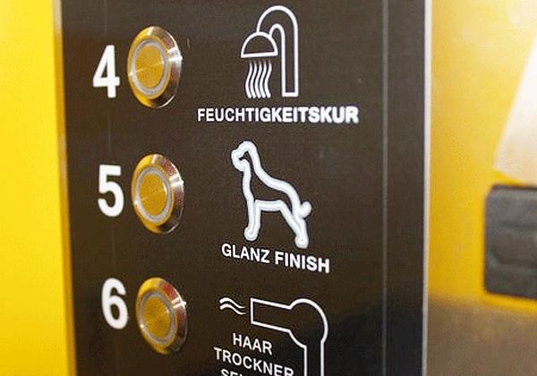Zwei auf einen Schlag - Berlin bekommt gleich zwei Hunde-Wasch-Center