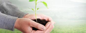 Nachhaltig attraktive Franchise-Partnerschaften