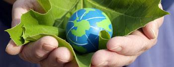 Nachhaltigkeit – Modische Randerscheinung oder Mehrwert im Markenaufbau?