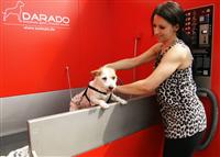 Das Geschäftskonzept von SB-Hundewaschcenter Darado