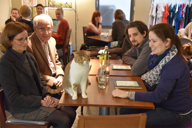 Einfach zum Schnurren: Vegetarisch-vegan selbstständig mit dem Gastronomie-Konzept Café Katzentempel