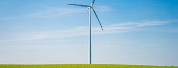 Green Franchising – Anregungen für ein nachhaltiges Franchising