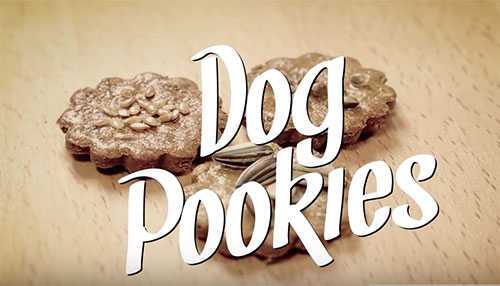 Dog pookies promo Video