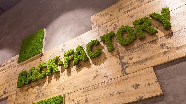 Back-Factory: Backgastronomisches Franchise-System feiert Neueröffnungen