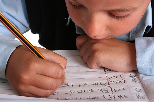 Den Schulerfolg fördern: Gründen mit dem Nachhilfesystem Lernzirkel-Grips